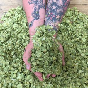 Whole Hops - 100g Nitrogen flushed Vacuum Packs