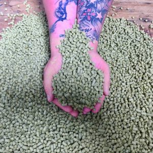 Pellet Hops - 100g Nitrogen flushed Vacuum Packs